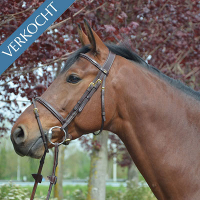 Lancelot ter Linden (°2011)